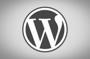 WordPress Website Developers Perth